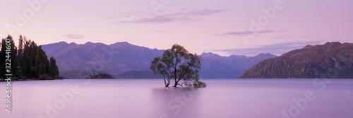 That Wanaka Tree at Sunset, Lake Wanaka New Zealand, Popular Travel Destination Canvas Print