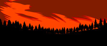 Vector Of Pine Trees Filled Wi...
