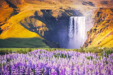 Panel Szklany Wodospad Amazing landscape with famous Skogafoss waterfall on Skoga river. Iceland, Europe
