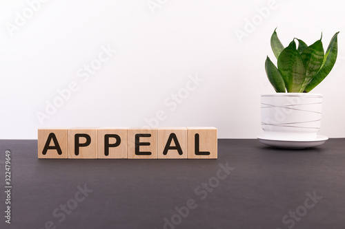 Appeal word on wooden cubes on a dark table with a flower and a light background Canvas Print
