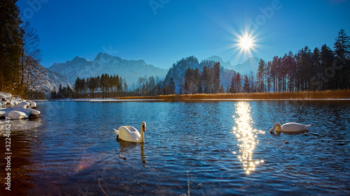 Warmer Wintertag am Almsee im Almtal Wallpaper Mural