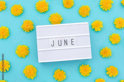 Fototapeta Text June on light box and yellow dandelions on blue background