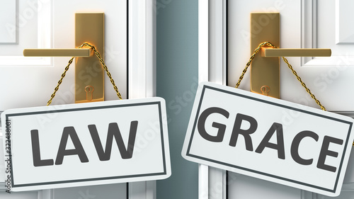 Fototapeta Law or grace as a choice in life - pictured as words Law, grace on doors to show that Law and grace are different options to choose from, 3d illustration obraz