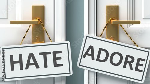 Hate or adore as a choice in life - pictured as words Hate, adore on doors to sh Canvas Print