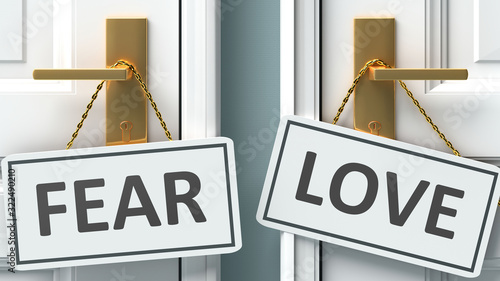 Fear or love as a choice in life - pictured as words Fear, love on doors to show Canvas Print