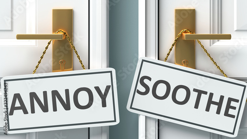 Annoy or soothe as a choice in life - pictured as words Annoy, soothe on doors t Wallpaper Mural