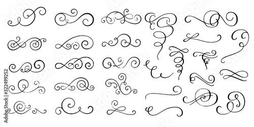 Fototapeta Swirl ornament, Swirl ornament  vector icon illustration obraz