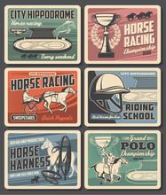 Equestrian Sport Vector Design...