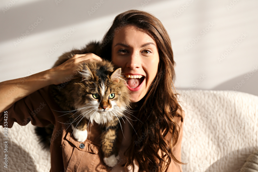 Fototapeta Portrait of young woman holding cute siberian cat with green eyes. Female hugging her cute long hair kitty. Background, copy space, close up. Adorable domestic pet concept.