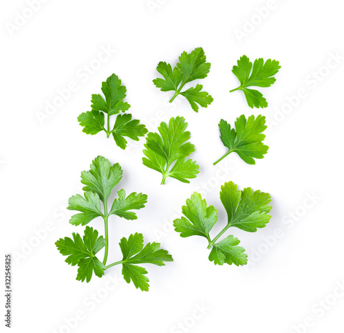 Fotografía fresh parsley herb isolated on white background