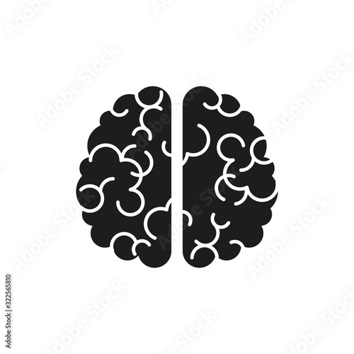 Obraz The icon of the brain. Simple vector illustration - fototapety do salonu