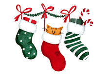 Christmas Colorful Stockings With A Cute Orange Cat. Watercolor Painting. Hand Drawn Illustration