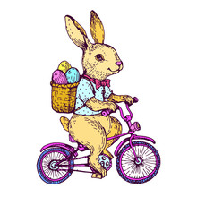 Easter Rabbit, Cute Bunny With...