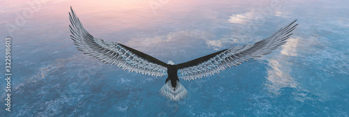 Eagle flying flush with water Fototapeta