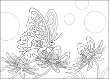 Ornate Butterfly Sitting On A ...