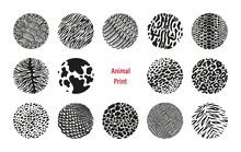 Wild Animal Print Circles Vect...