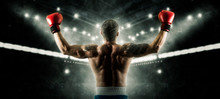 Boxer Celebrating Win On Dark ...