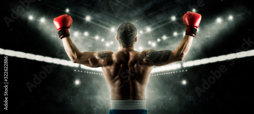 Платно Boxer celebrating win on dark background. Sports banner