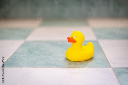 Fototapeta Patito de goma amarillo en el baño