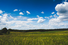 A Grass Prairie And Corn Field On A Summer Day In Michigan