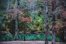 Lake At Pickett CCC Memorial S...
