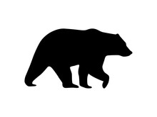 Vector Bear Icon Silhouette Is...