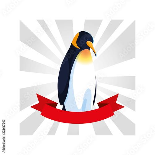 Fototapeta penguin greeting card with ribbon obraz