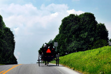 Amish Afternoon Drive WFT