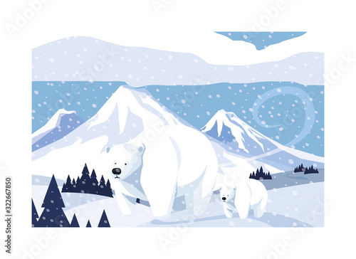 Fototapeta polar bear with cub at the north pole, arctic landscape obraz