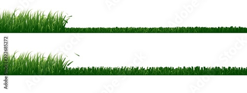 Obraz Set of mowed grass isolated on white background.	 - fototapety do salonu
