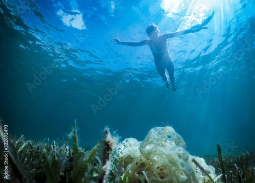 Carta da parati Free flight over a reef in a tropical sea under water