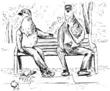The Picture Of The Pigeons On A Bench In The Park Chew Sunflower Seeds.