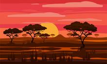 Sunset In Africa, Savanna Land...