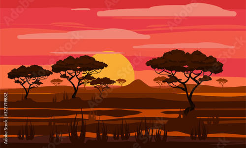 Fotografie, Obraz Sunset in Africa, savanna landscape with the silhouettes of trees, grass bushes