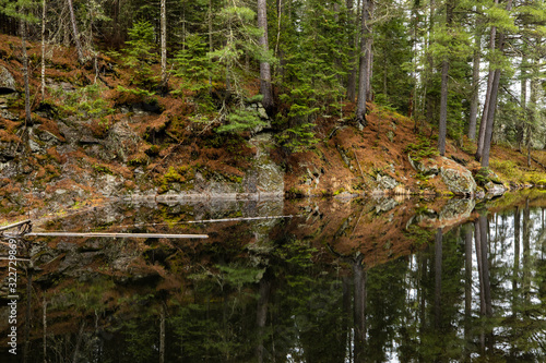 Photo The wilderness of Algonquin in Canada