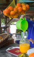 Matakana Farmersmarket New Zealand. Pooring Orangejuice In A Can.