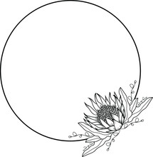 Simplistic Floral Protea Vector Wreath