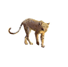 Handpainted Watercolor Leopard Illustration Isolated On White