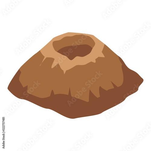 Fotografie, Obraz Erupted volcano icon