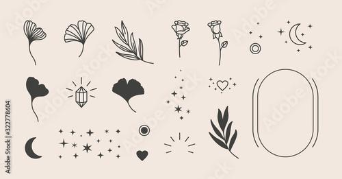 Obraz Elements for logo design - rose, Ginkgo Biloba Leaf, Stars, moon, Frame. Vector illustration in a minimal linear style - fototapety do salonu