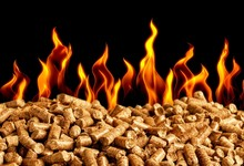 Hot Burning Wood Chip Pellets
