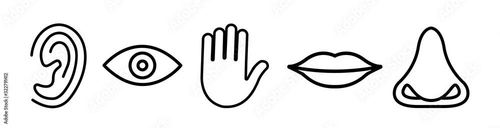 Fototapeta Five senses vector icons set. vision, hearing, touch, taste, smell