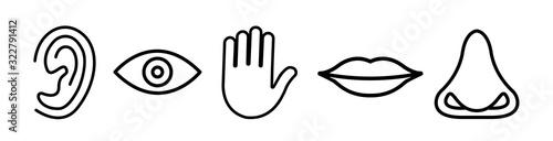 Obraz Five senses vector icons set. vision, hearing, touch, taste, smell - fototapety do salonu