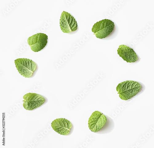 Obraz Green mint leaves in circle frame on white bacground - fototapety do salonu