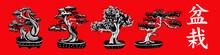 Set Of 4 Bonsai Trees. Vector ...