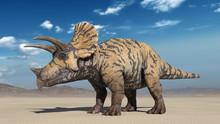 Triceratops, Dinosaur Reptile ...