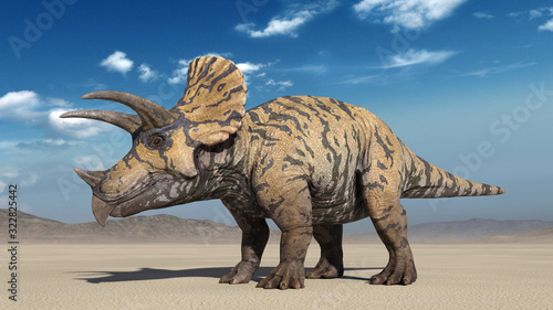 Triceratops, dinosaur reptile standing, prehistoric Jurassic animal in deserted Canvas Print