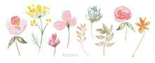 Wildflowers Watercolor Set. Gr...