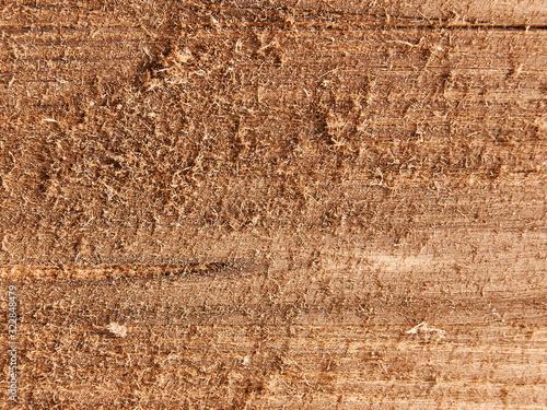 Obraz na plátně small wood shavings. background. texture.