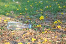 A Bottle Of Drinking Water Littering On Green Grass Ground Floor At The City Park With Many Yellow Flower And   Sun Light Background For An Environmental Cleaning Concept